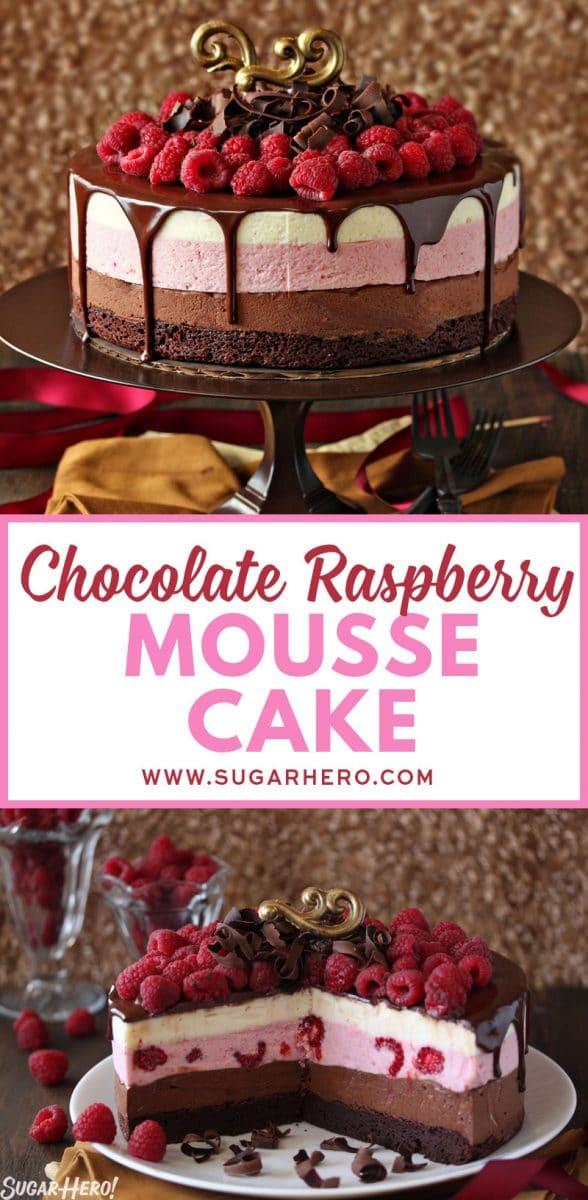 Chocolate Raspberry Mousse Cake Sugarhero