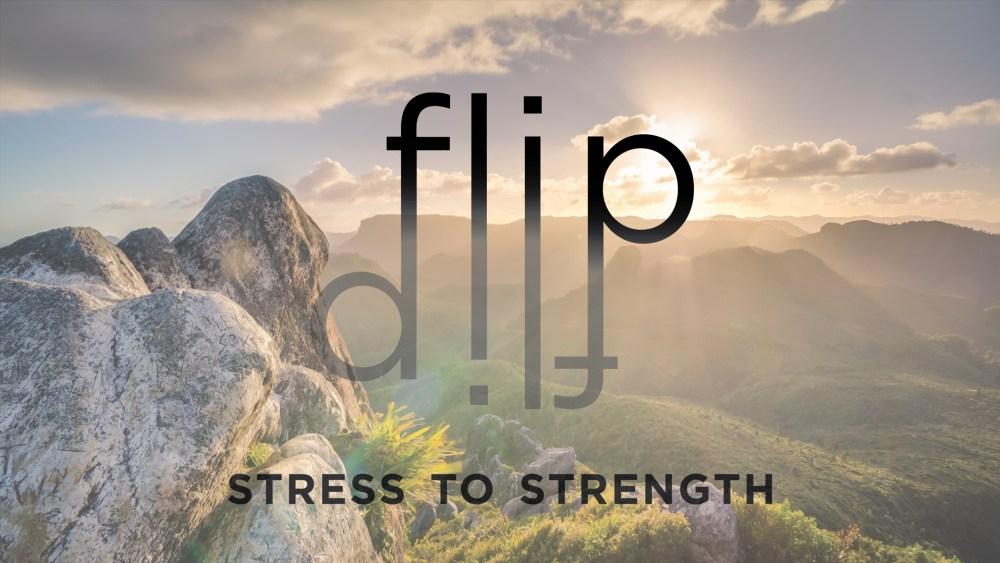 FLIP: Week 4 Image