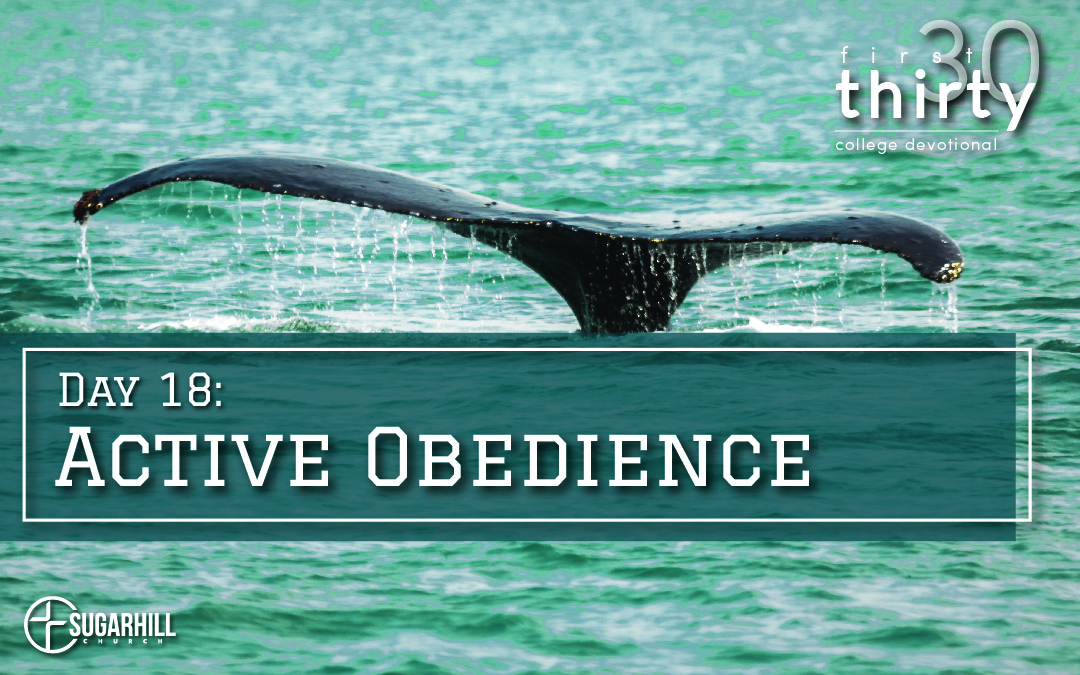 Day 18 – Active Obedience