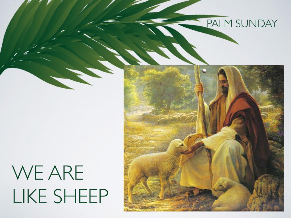 Palm Sunday.005