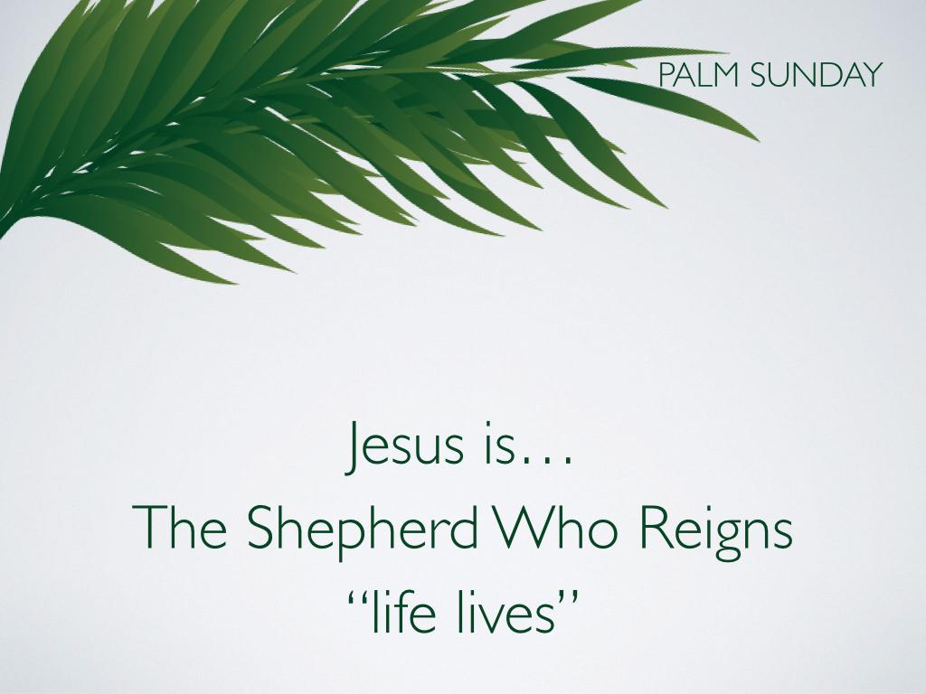 Palm Sunday.011