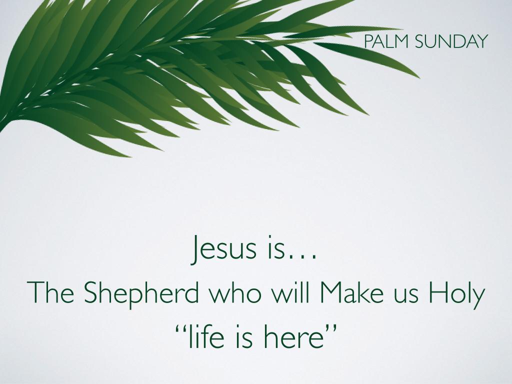 Palm Sunday.012