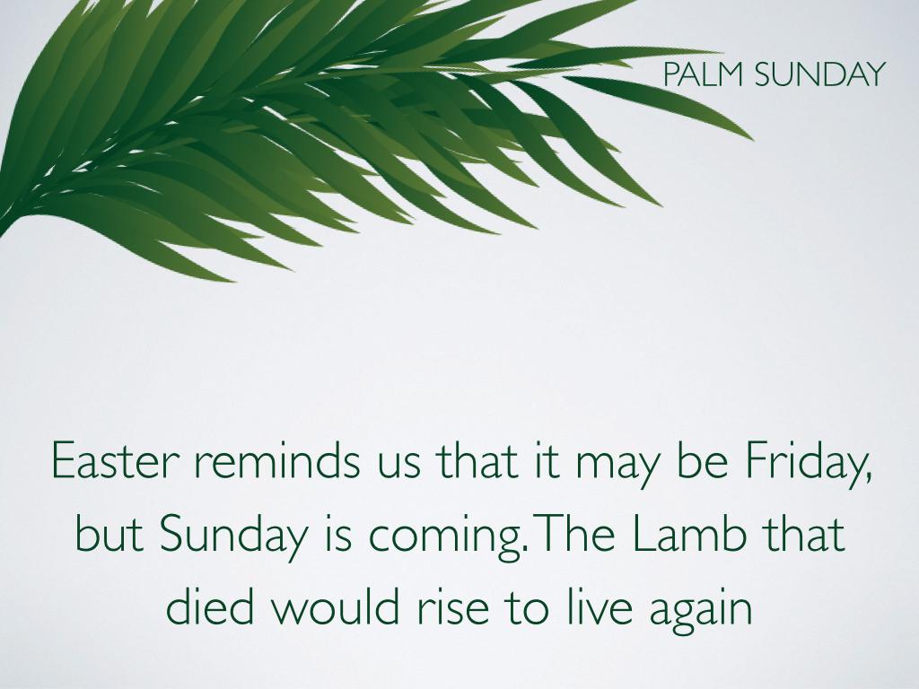 Palm Sunday.014