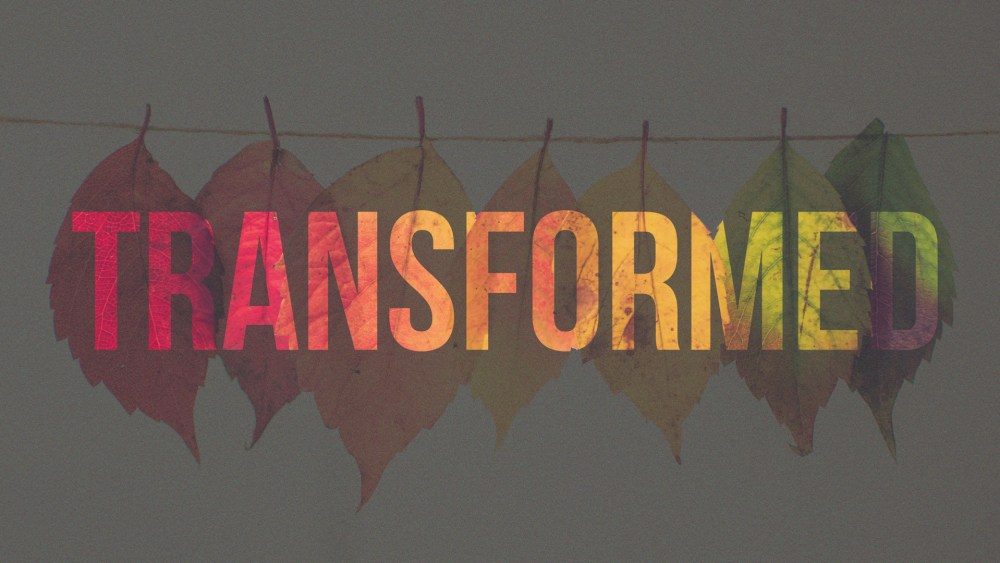 Transformed: Week 1 Image