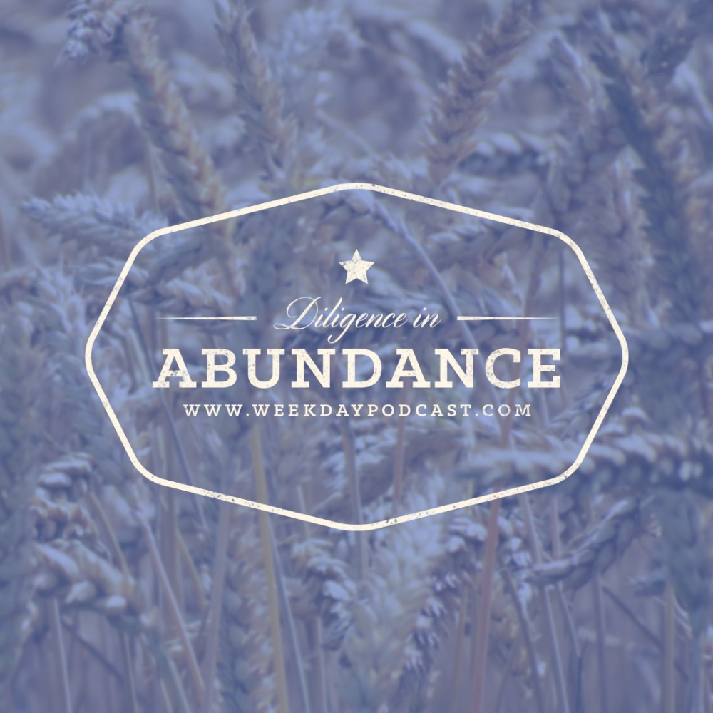 Diligence in Abundance - - July 14th, 2017 Image