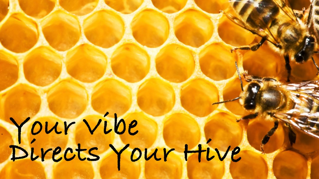 Your Vibe Directs Your Hive Image