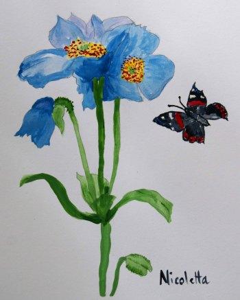fiore-e-farfalla