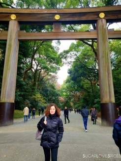 Nicoletta Goes to Japan part 4