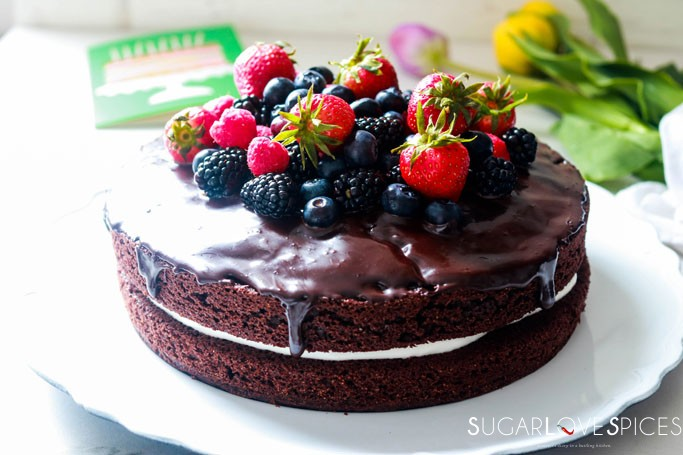 Yogurt Cream Chocolate Ganache Cake with Field Berries-frontal view