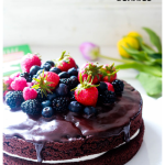 Yogurt Cream Chocolate Ganache Cake with Field Berries