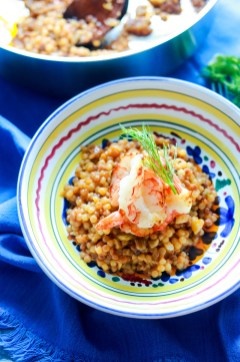 Fregola Sarda with Scampi and Fennel-plated-top view
