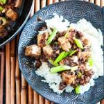 Authentic Sichuan Mapo Tofu Recipe-feature-one plate closeup