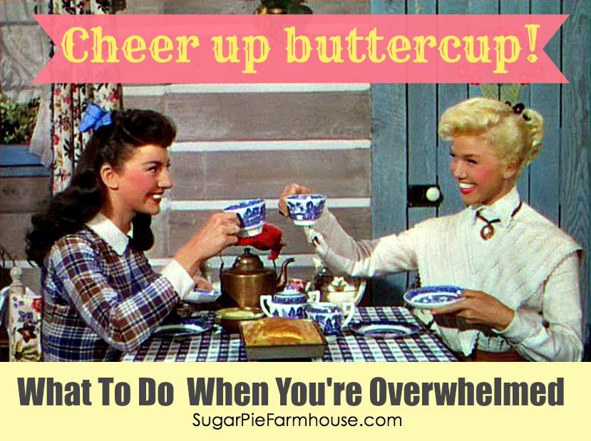 Sugar Pie Farmhouse » Blog Archive Cheer Up Buttercup! | Sugar Pie Farmhouse