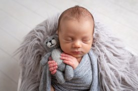 newborn photography felted bear prop baby photo shoot dudley