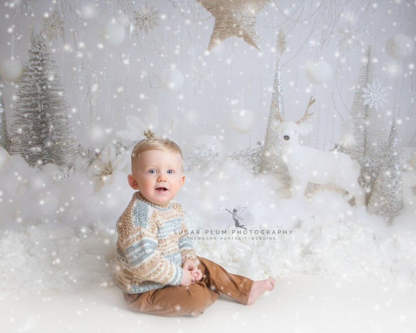 christmas mini session dudley west midlands