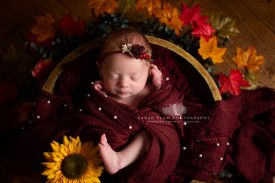 newborn photographer dudley Birmingham west midlands baby photography sunflower autumn