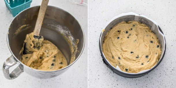 Blueberry cake batter in a springform tin, ready for baking