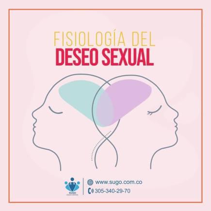 deseo sexual Deseo Sexual deseo sexual 1 300x300
