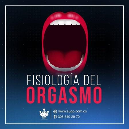 [object object] El Orgasmo orgasmo 2 300x300