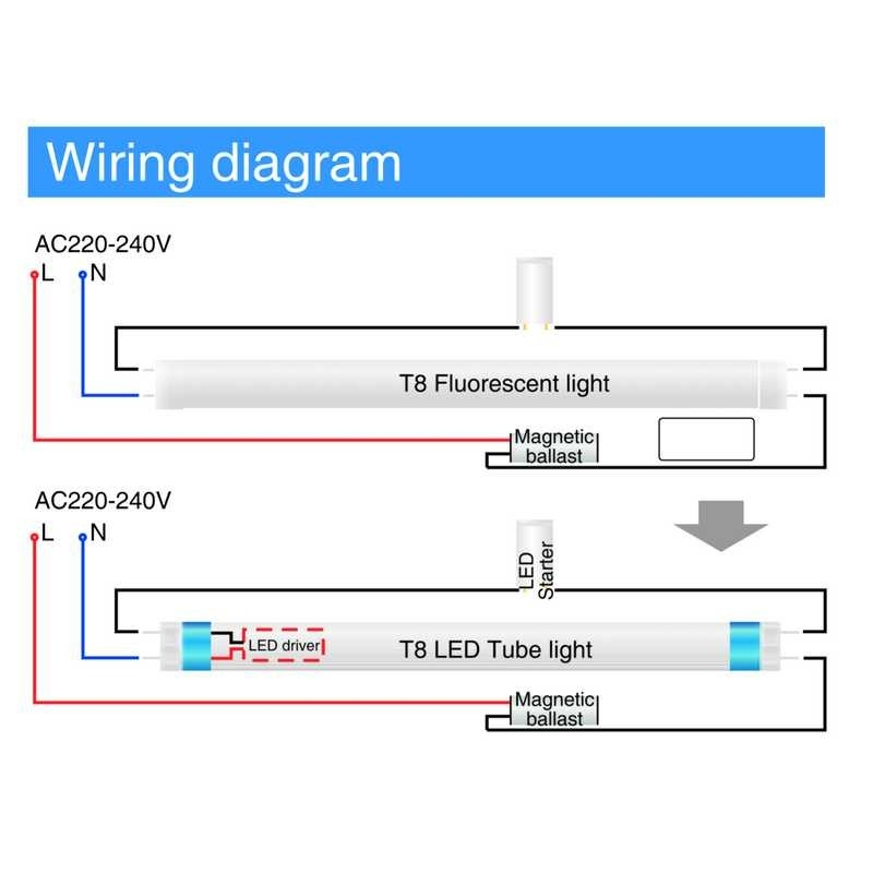 wiring diagram philips led tube light electrical circuit