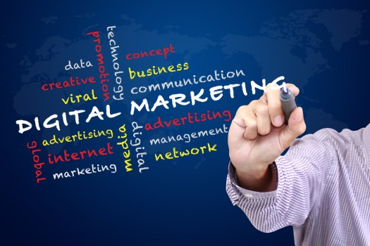 digital-marketing-training-chandigarh