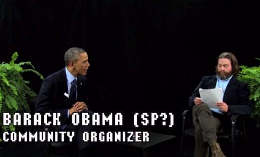 obama-ferns