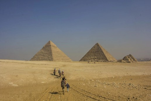 camels walking toward the pyramids of giza cairo travel talk tours egypt solo female travel