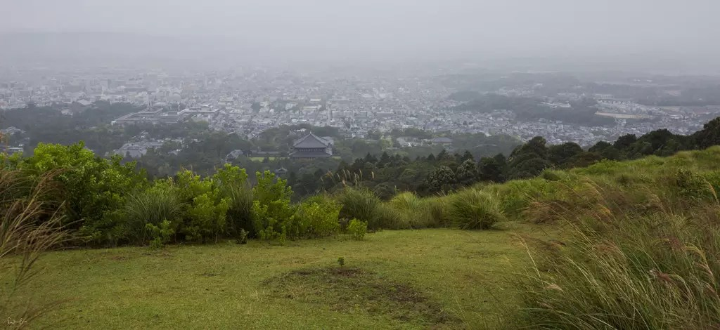 Nara view Mount Wakakusa