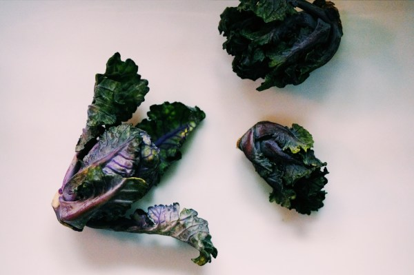 When Brussels Sprouts and Kale Have a Baby! Introducing Kalettes