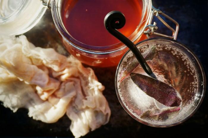 Rhubarb Shrub for Cocktails & Soda by Suitcase Foodist