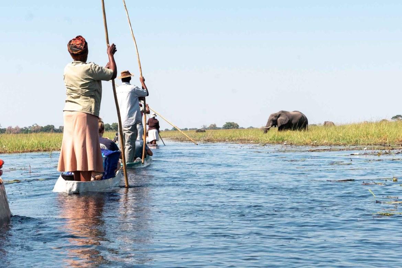 Okavango Delta river mokoro