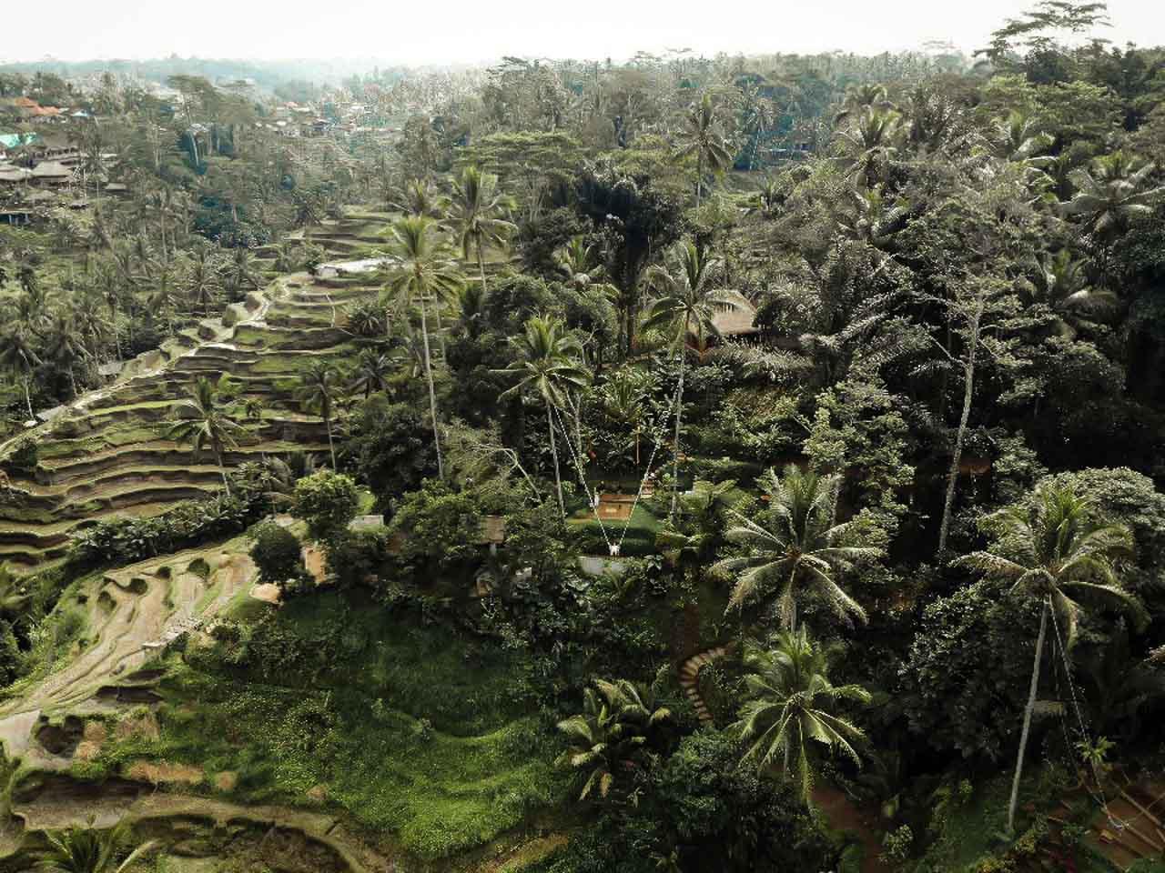 Ubud Bali Swing