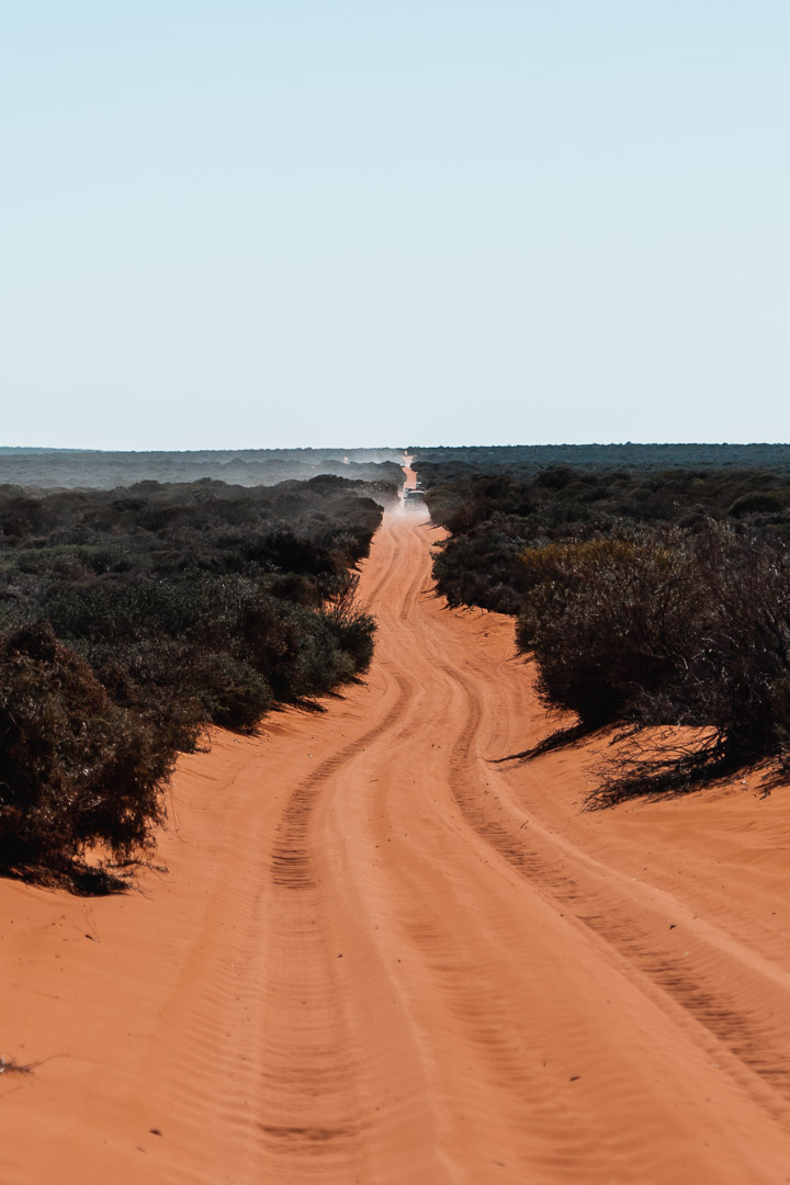 tracks in Francois Peron National Park