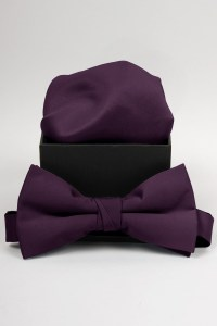 Plum Bow Tie from suitsyou.ie