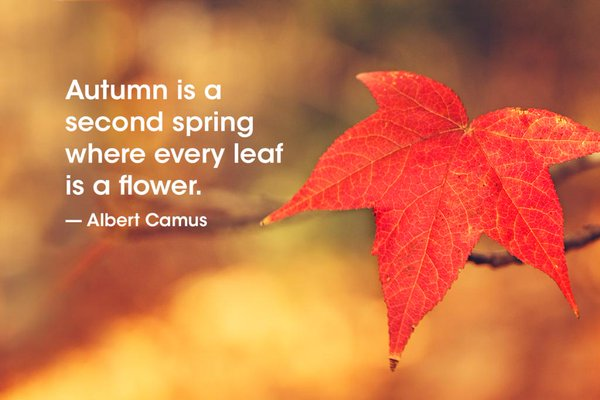 Autumn Days Thoughts