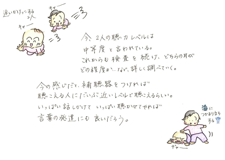 しきしの33