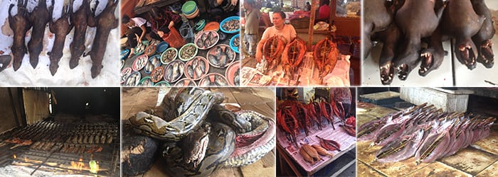 Tomohon Market Minahasa Highland Tour