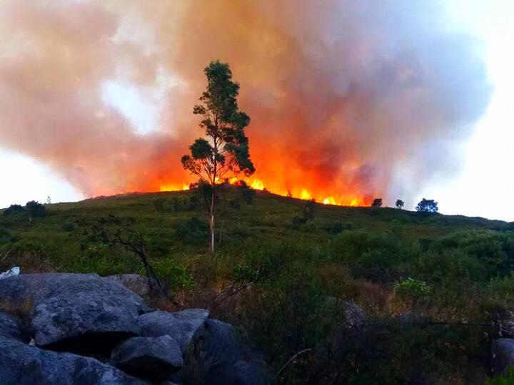 Incêndio na Fóia
