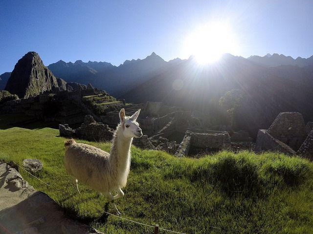 Machu Picchu Trek and Bike Tour