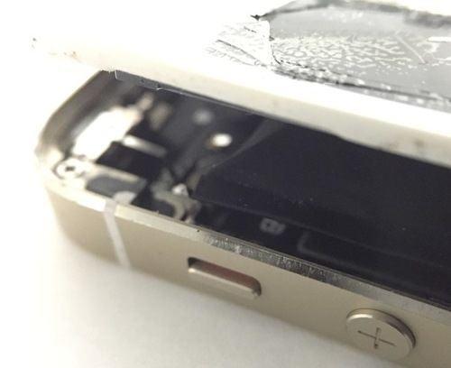 iPhone5S ハマグリ部分を拡大