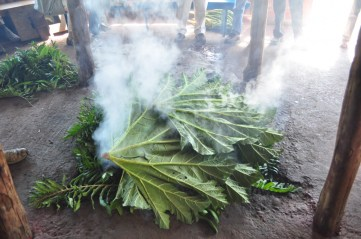 Preparing the Curanto, a traditional way of cooking food in Chiloé Island