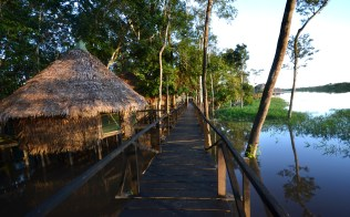 Eco-lodge in the Amazon Rainforest