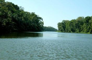 The Tortuguero Canals, Costa Rica