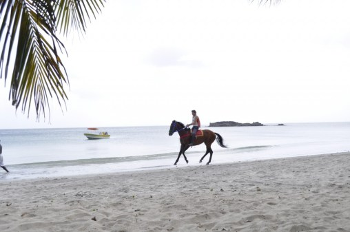 Horse racing on the beach, Providencia Island, Colombia