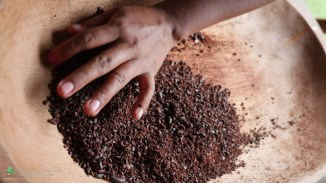 Cacao Workshop in Yorkin, Costa Rica