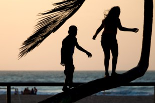 Children playing on a crooked palm tree in Riohacha, Colombia