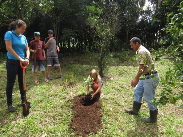 Tree Planting in the gardens of the Xandari Resort, sustainable lodge in Costa Rica