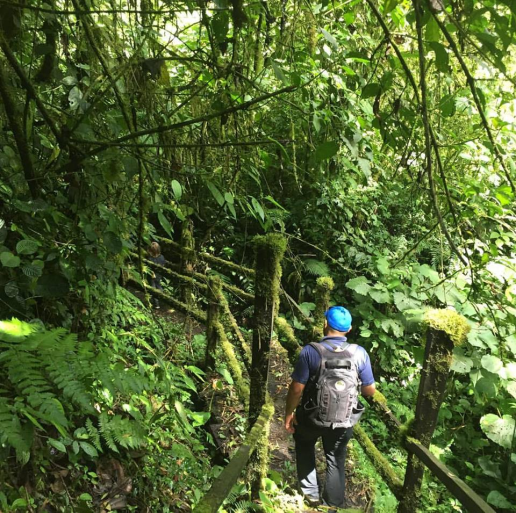 Hiking in the Chiriqui Highlands during a tour of Panama