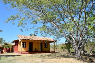 Cabins at the co-operative in Oaxaca where you would stay during the turtle watching holiday, Mexico