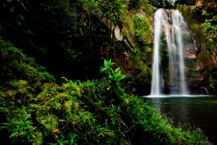 During an excursion to the Cuetzalan waterfalls in Puebla